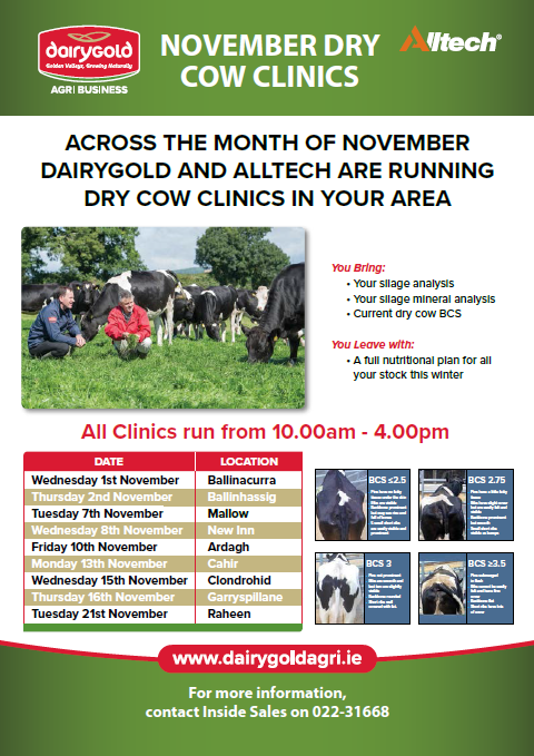 November Dry Cow Clinic – Ardagh
