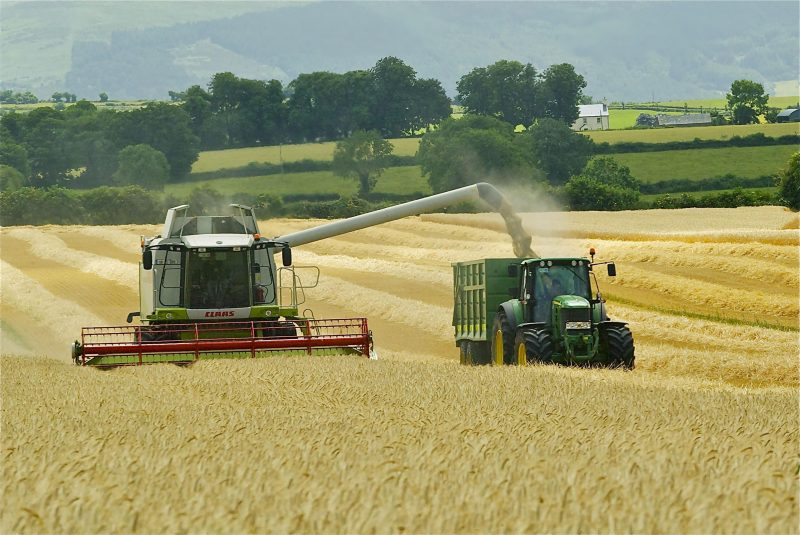 Dairygold Finalises Cereal Prices for 2017 Harvest