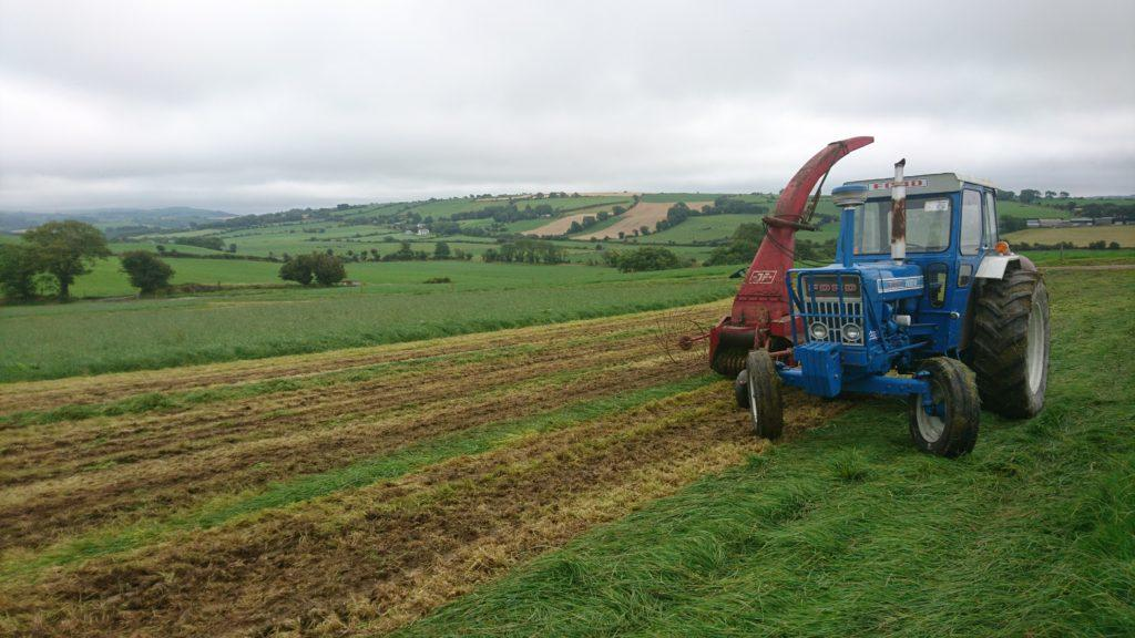 How higher DMD silage can save you money