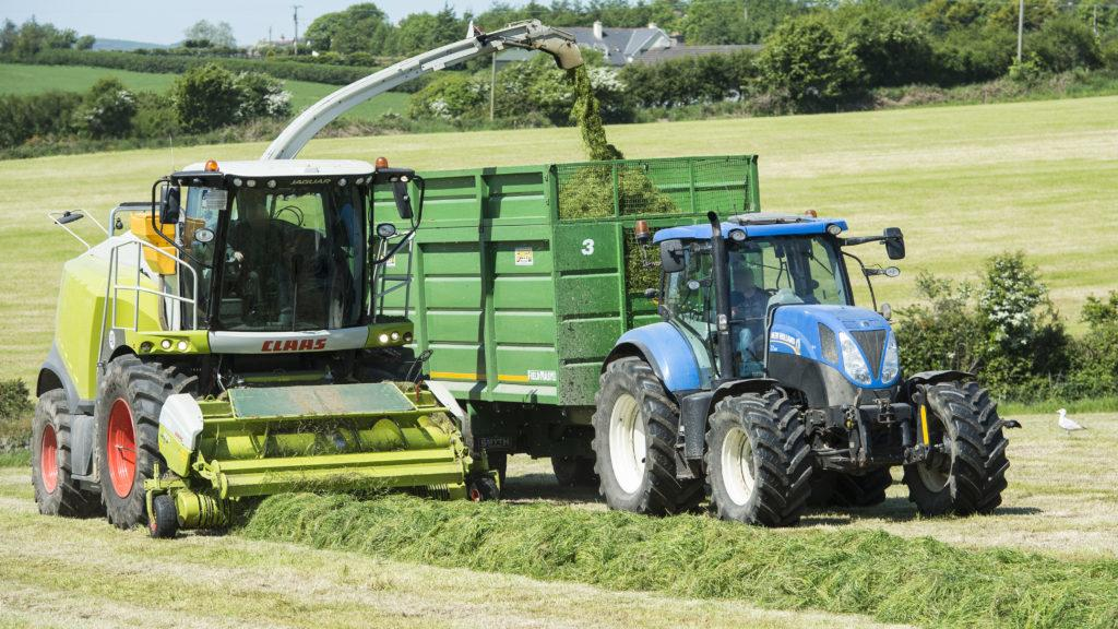 Why silage ground often has the poorest level of soil fertility and how to fix it